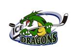 Ice Dragons Paddle Club Fundraising Ideas Sydney