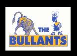 Bulleen Templestowe FC