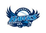 Gosnells Hawks Baseball Club